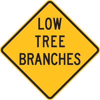 LOW TREE BRANCHES