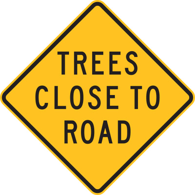 TREES CLOSE TO ROAD
